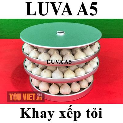 Nồi làm tỏi đen Luva A5