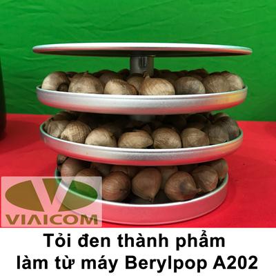 Máy làm tỏi đen BERYLPOP A202