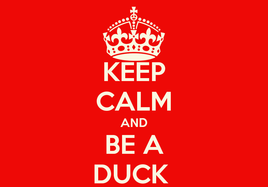 Keep calm and be a duck