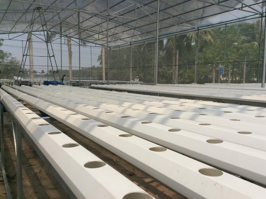 Hệ thống thủy canh NFT thương mại