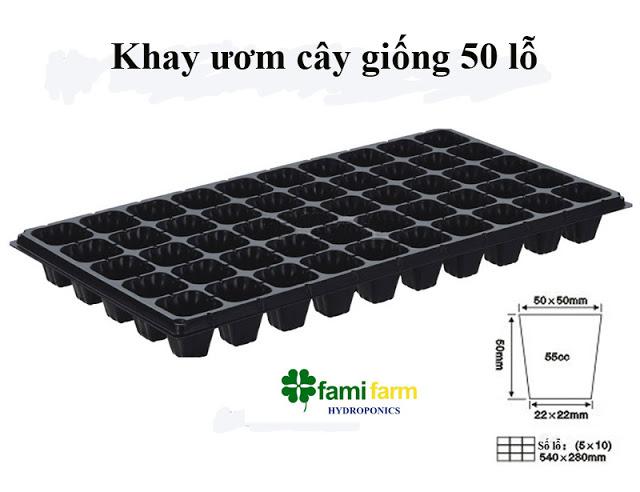 Khay ươm cây giống 32-128 lỗ