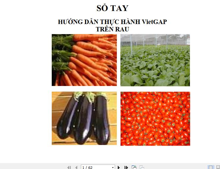 Sổ tay hướng dẫn thực hành VietGap trên cây rau