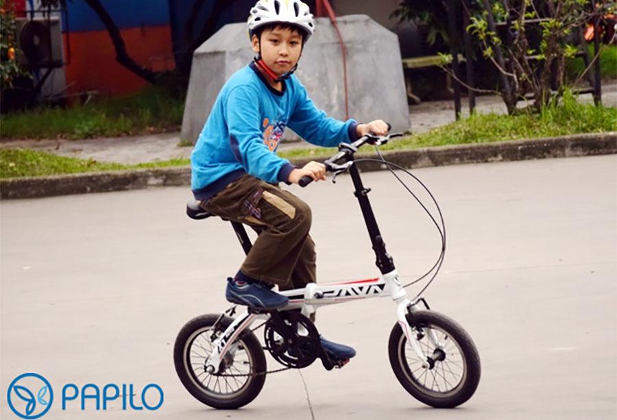 xe đạp gấp chính hãng
