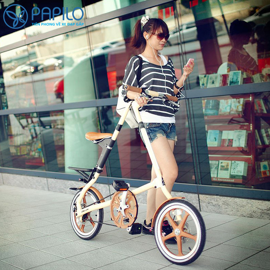 Xe đạp gấp Strida LT