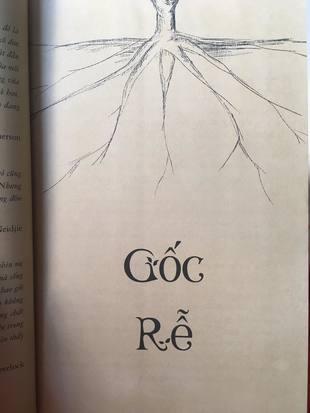Tiểu thuyết Vòm Rừng Richard Powers