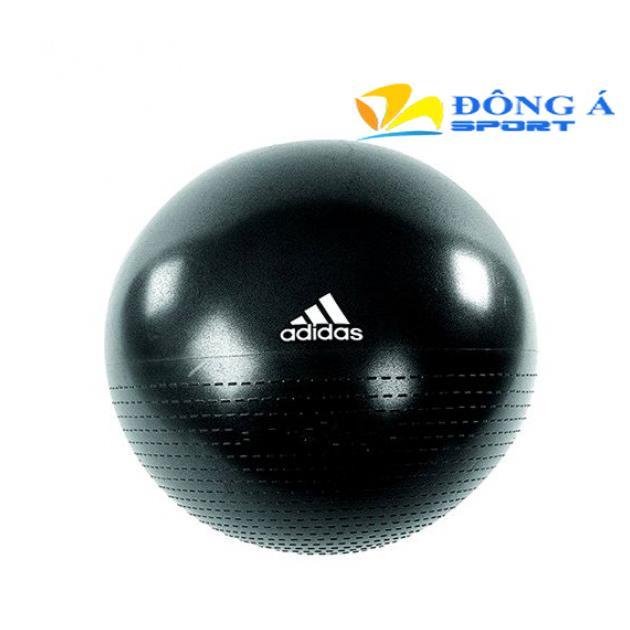 Bóng tập thể dục Adidas ADBL 12245