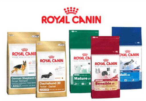 Thức ăn Royal Canin cho chó mèo TPHCM