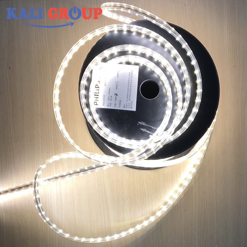 LED Dây Philips DLI 31059