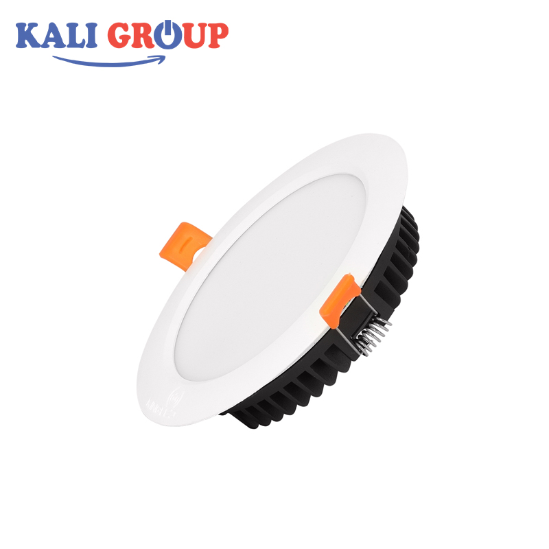 Đèn LED Downlight DL8-T120