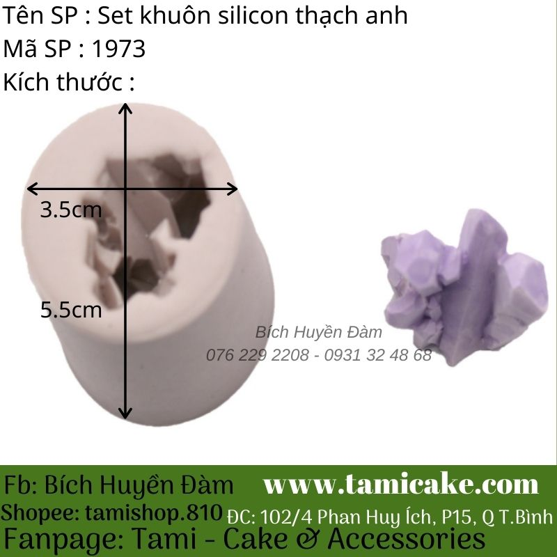 Set khuôn silicon thạch anh 1973