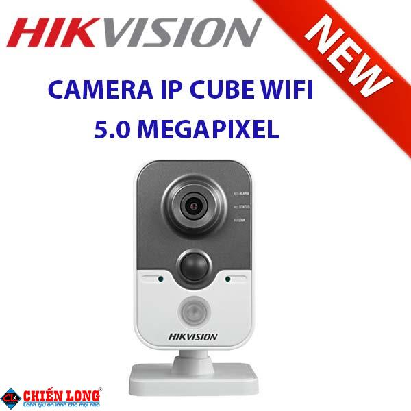 HIKVISION DS-2CD2455FWD-IW