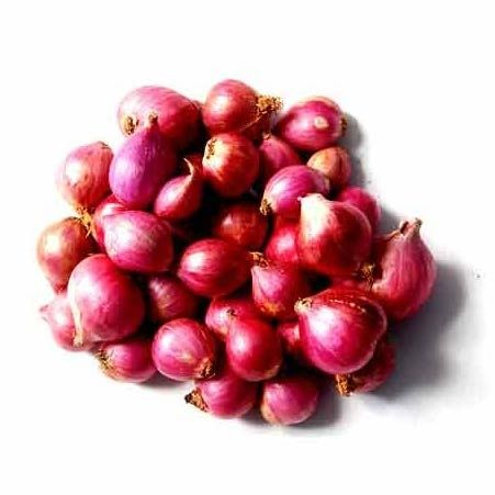 Supply of Fresh red Onion from India