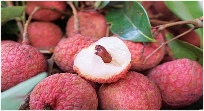 Trade opportunities to import Lychee from Vietnam 2018