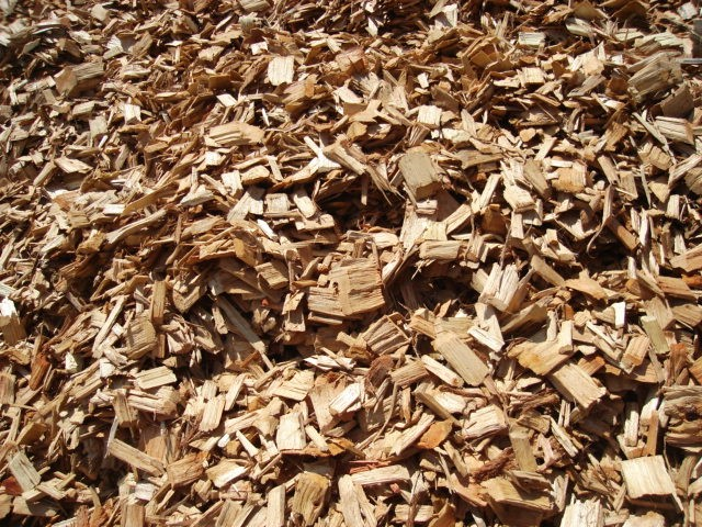 South Korean Business Looking to Import Wood Chips From Vietnam