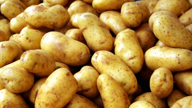 Yellow flesh potato