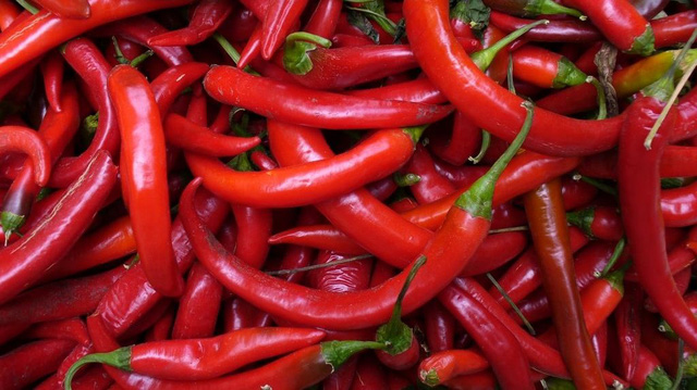 South African Company Looking to Import Red Chili Peppers