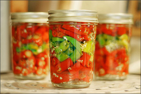 Romanian Customer Looking to Import Pickled Chili Peppers