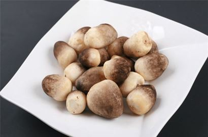 Canned mushroom for export