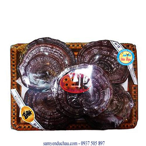 TPCN: Nấm Linh Chi Đỏ Hàn Quốc 5 tai/1kgs(NAM4)