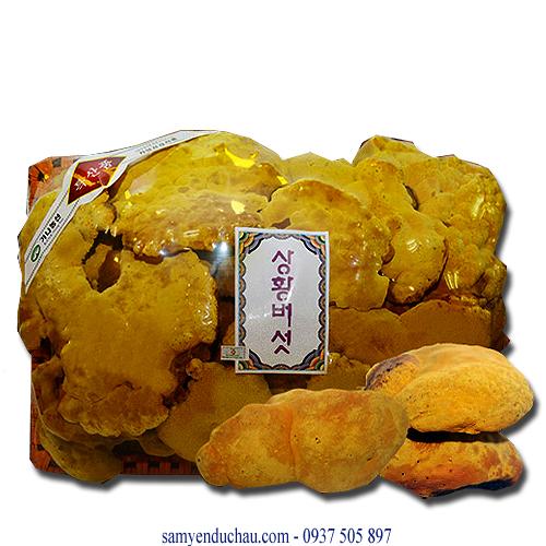 TPCN: Nấm Thượng Hoàng Hàn Quốc 1kg (NAM1)