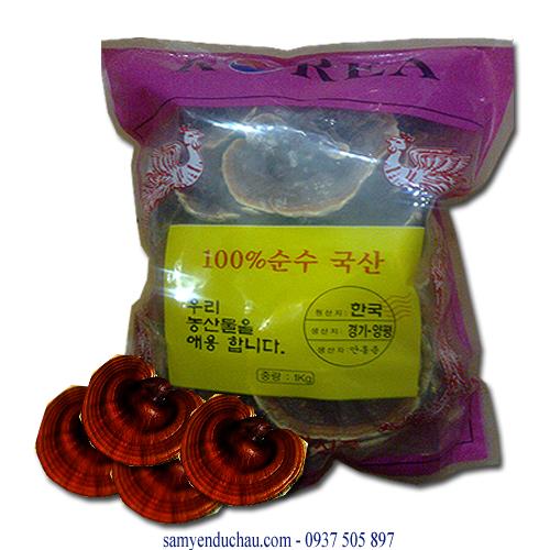 TPCN: Nấm Linh Chi Núi Đá Gana Hàn Quốc 0.5kg (NAM14)