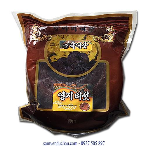 TPCN : Nấm Linh Chi Bao Nâu Trồng Tai Lớn (NAM20)