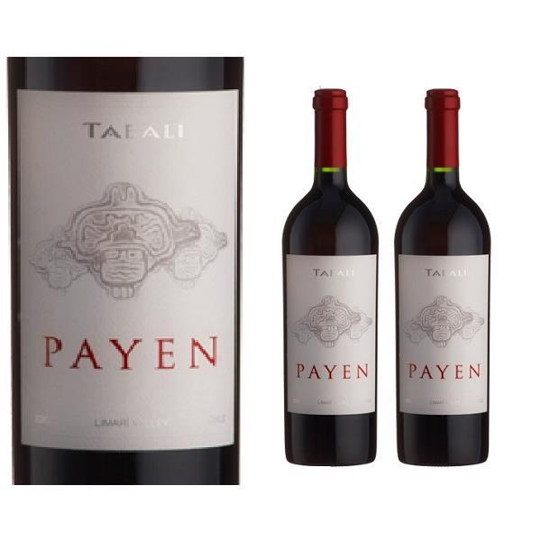 Rượu Vang Tabali Payen