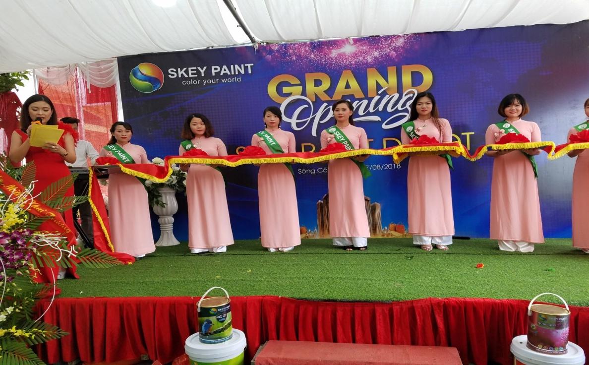 sơn cao cấp-sơn công nghệ xanh | SKEY VIỆT NAM
