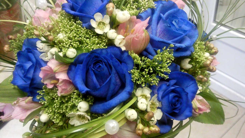 Chiêm ngưỡng những bông hoa hồng xanh đẹp đầy bí ẩn
