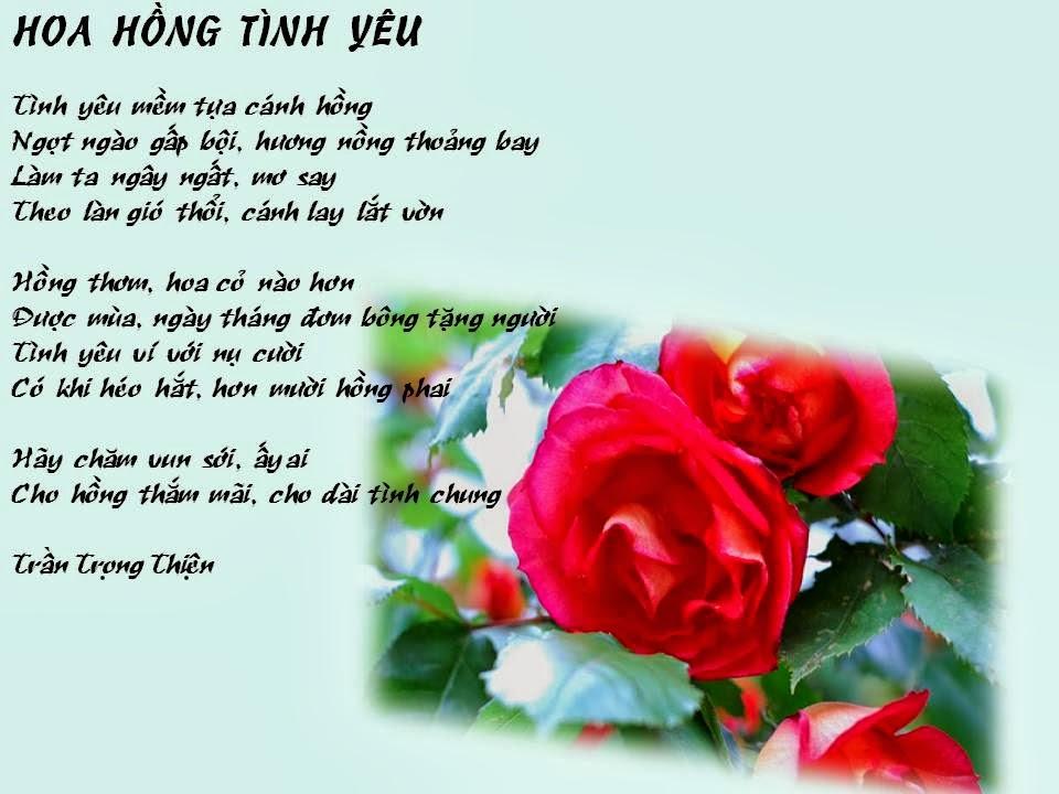 Kết quả hình ảnh cho thơ hoa hồng