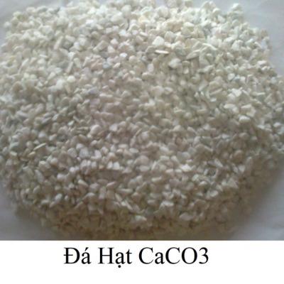 da-hat-da-tam-caco3