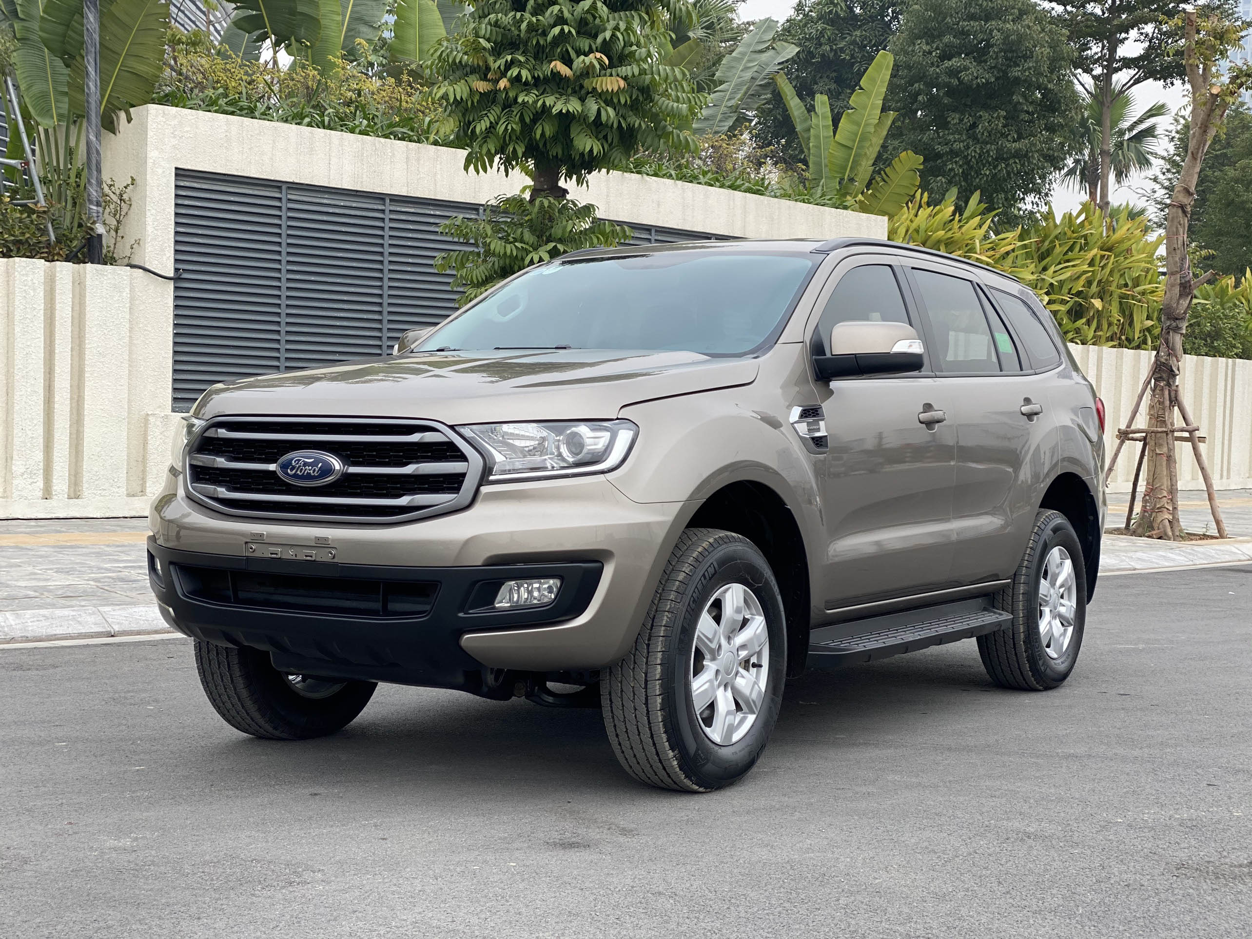 Ford Everest Trend Sx 2019