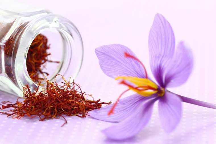 Nhụy Hoa Nghệ Tây Negin 1gram- Saffron Bahraman