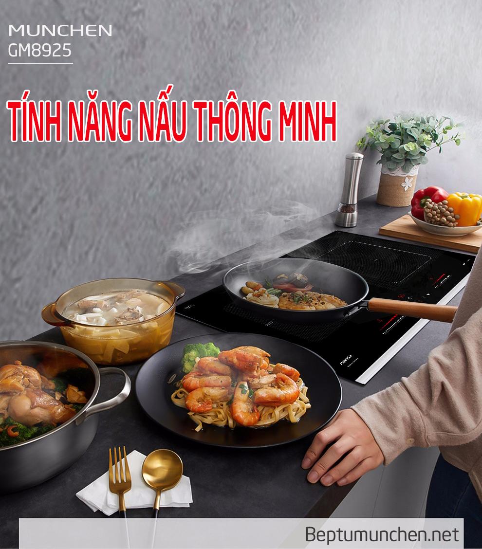 bếp từ munchen gm 8925