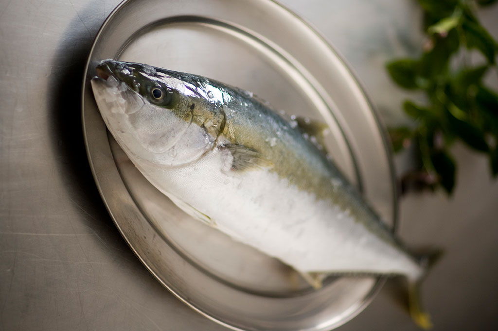 how to cook kingfish fillet