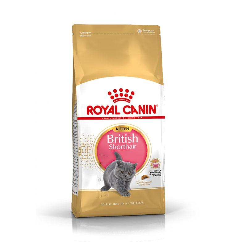 Thức ăn cho mèo Royal Canin British Shorthair Kitten
