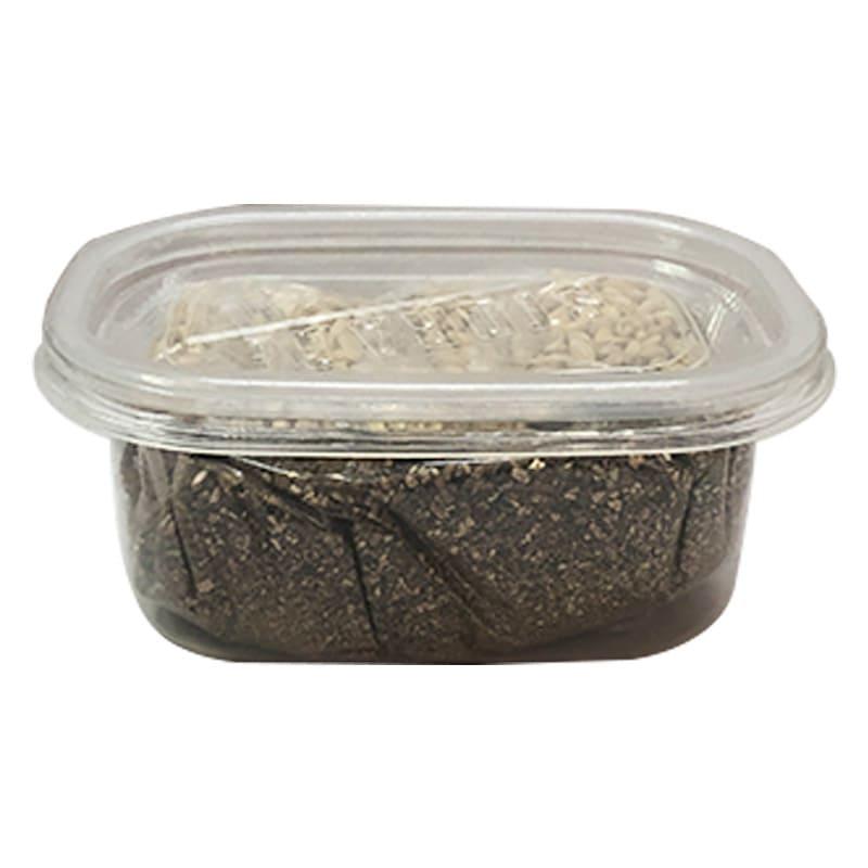 Set hạt giống cỏ trồng cho mèo Diil LS123