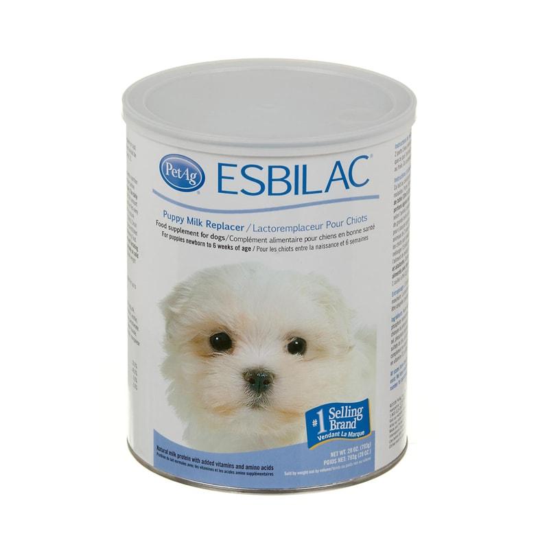 Sữa bột cho chó mèo Esbilac 1st  Petag Mỹ