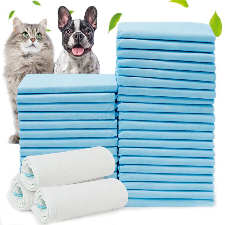 Tấm lót vệ sinh cho chó mèo