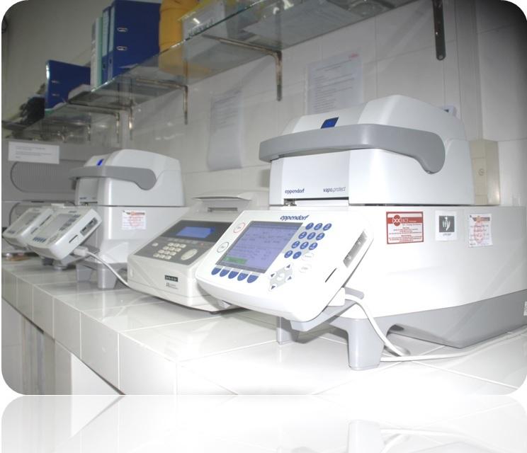 Máy realtime PCR