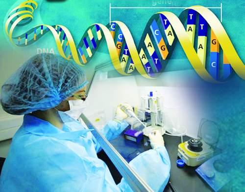 PHÂN TÍCH ADN (XÉT NGHIỆM ADN) XÁC ĐỊNH HUYẾT THỐNG ĐƯỢC THỰC HIỆN NHƯ THẾ NÀO?