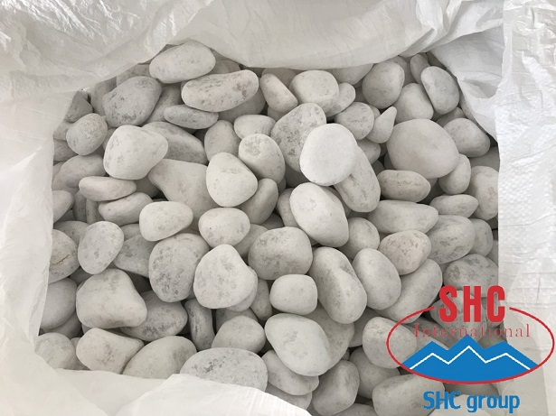 Weekly Shipment Of Big Size Snow White Pebble To Traditional Customer