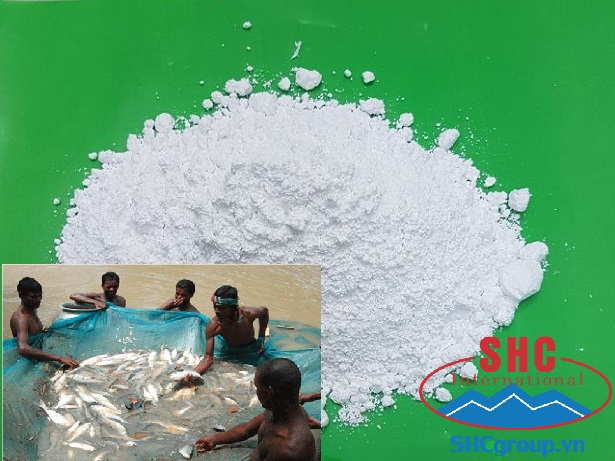 Calcium Carbonate Powder Used For Aquaculture Sector