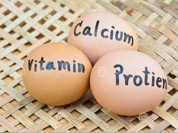The Important Role Of Calcium Level In Limestone For The Second Cycle Of Egg Production(Part1)