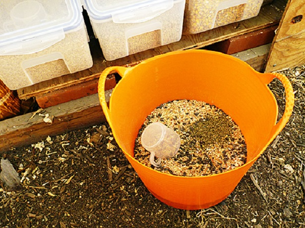 Mixing Feed For More Tailored Layer Rations