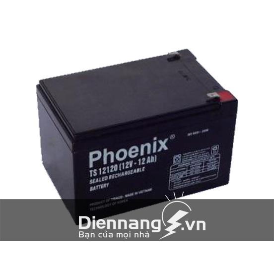 Ắc quy xe điện Phoenix TS12120 (12V - 12Ah)