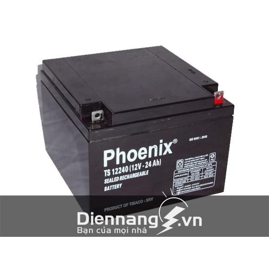 Ắc quy Phoenix 12V-24Ah (TS12240W)