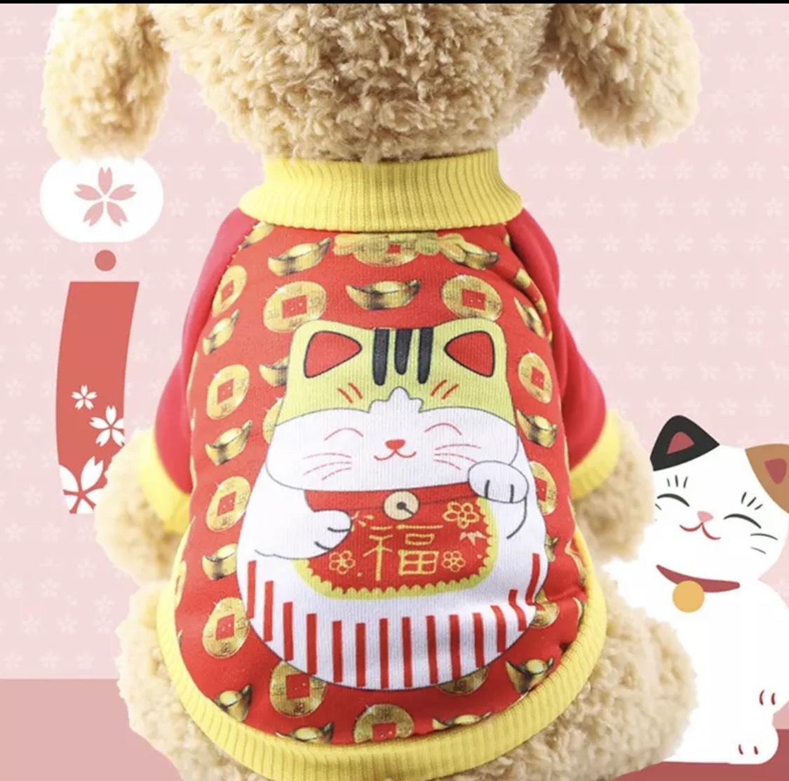 Áo thun mèo may mắn