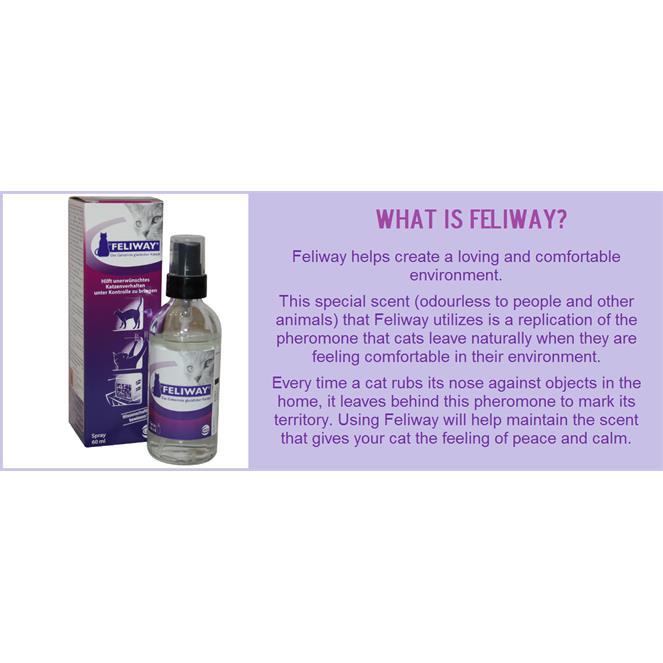 Feliway Spray for Cat