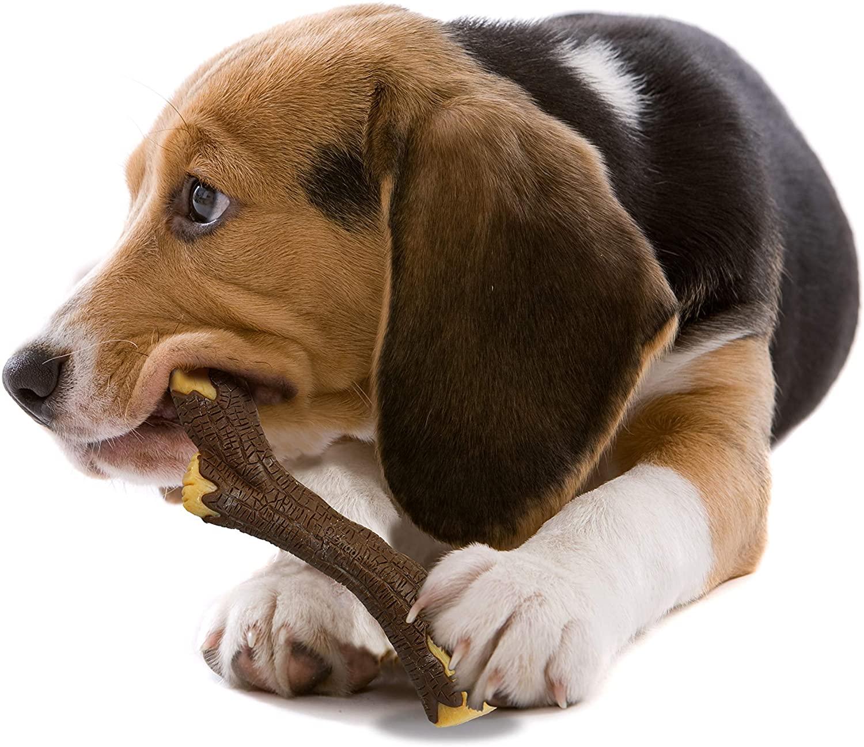 Nylabone Real Wood Stick Strong Dog ChewToy  Medium/Wolf